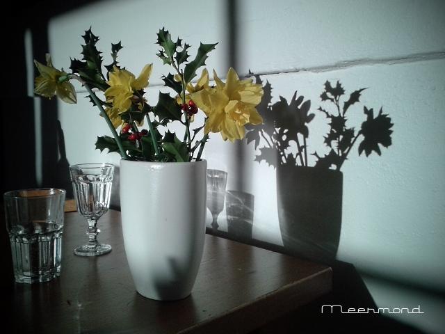 Blumen - Kopie