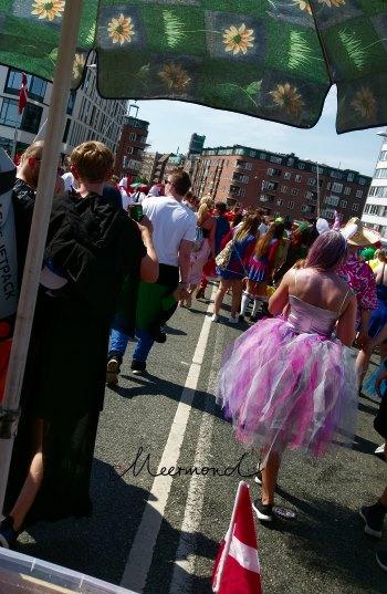 Karneval Aalborg Kostüme