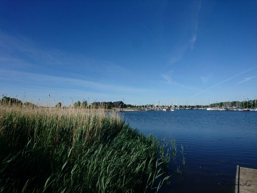 Greve Kommune Jachthafen