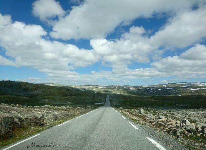 Aurlandsfjell Norwegen