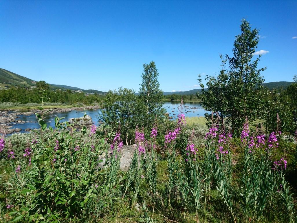 Geilo Ustedalsfjorden Wanderweg