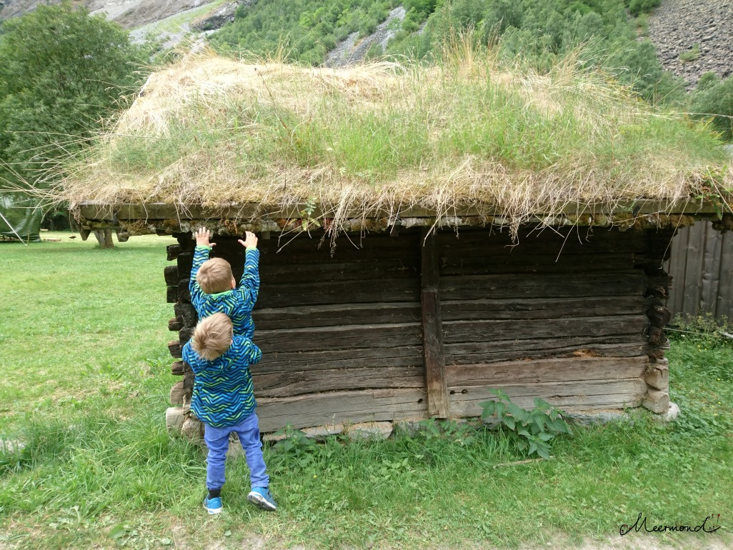 Norwegen Grasdach Holzhütte
