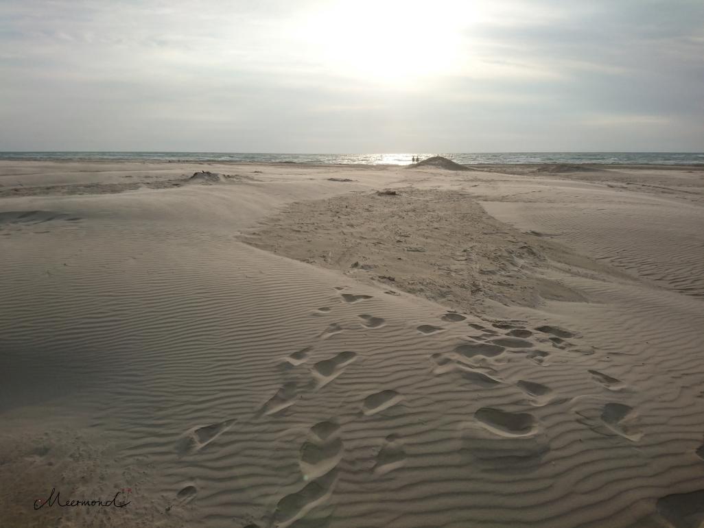 Saltum Strand Trockenheit Sommer 2018