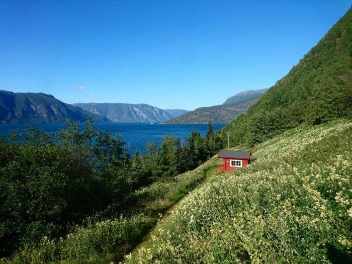 Sognefjord Lærdal Camping