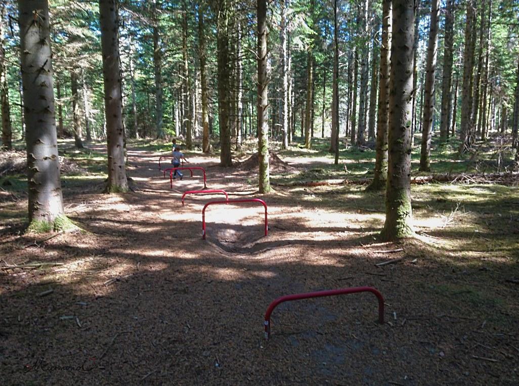 Blokhus Gateway Fitness Trimmdichpfad