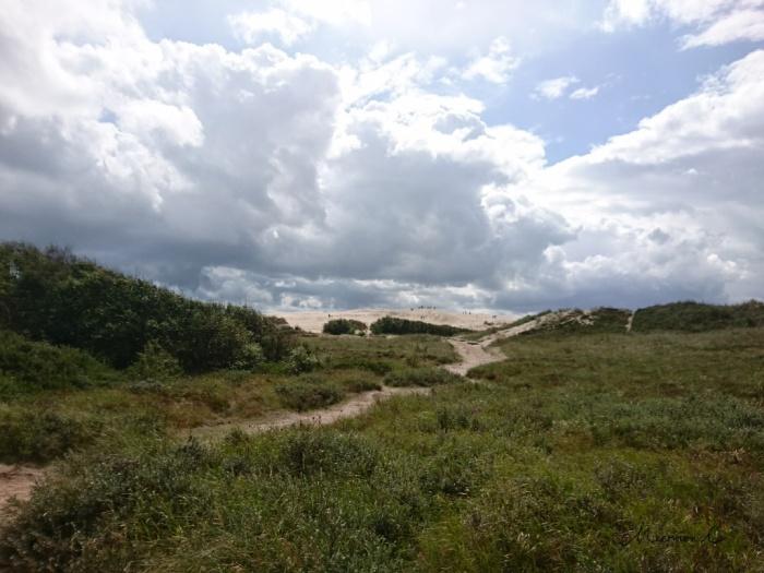 Raabjerg Mile Düne Dänemark