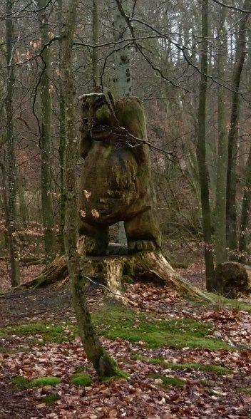 Wald Dänemark Troll