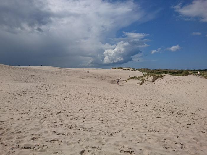 Wanderdüne Dänemark