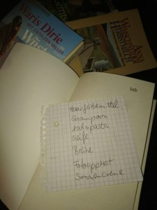 Buch Dänemark Ferienhaus Buchstadt