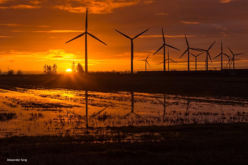 Dänemarkblog Dänemark Winter dunkel.jpg