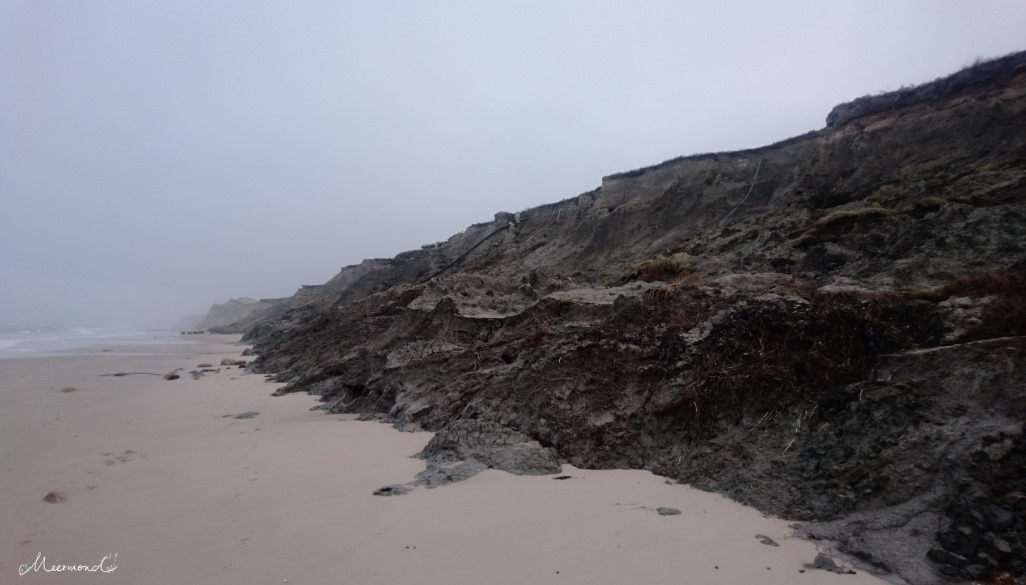 Abgerutschte Steilküste Nr. Lyngby