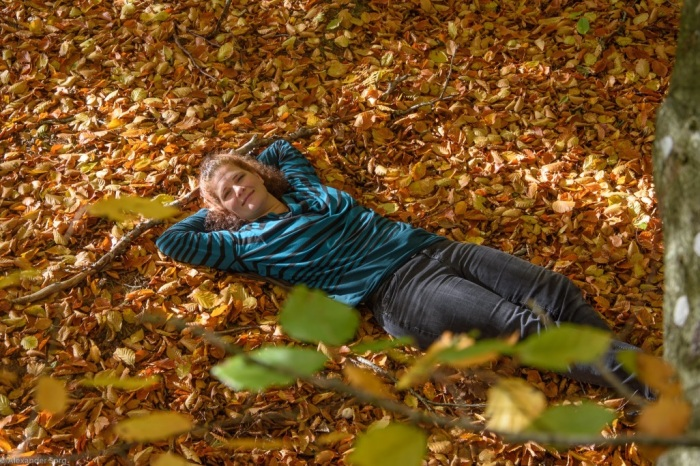 Herbst Dänemark Wandern